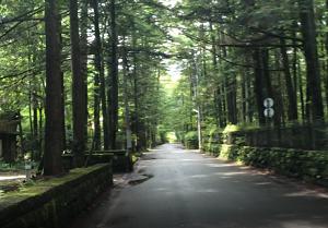 軽井沢らしい別荘地の風景